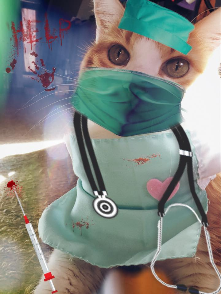 Dr. Butters